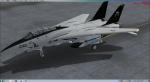 IRIS F-14 Tomcat