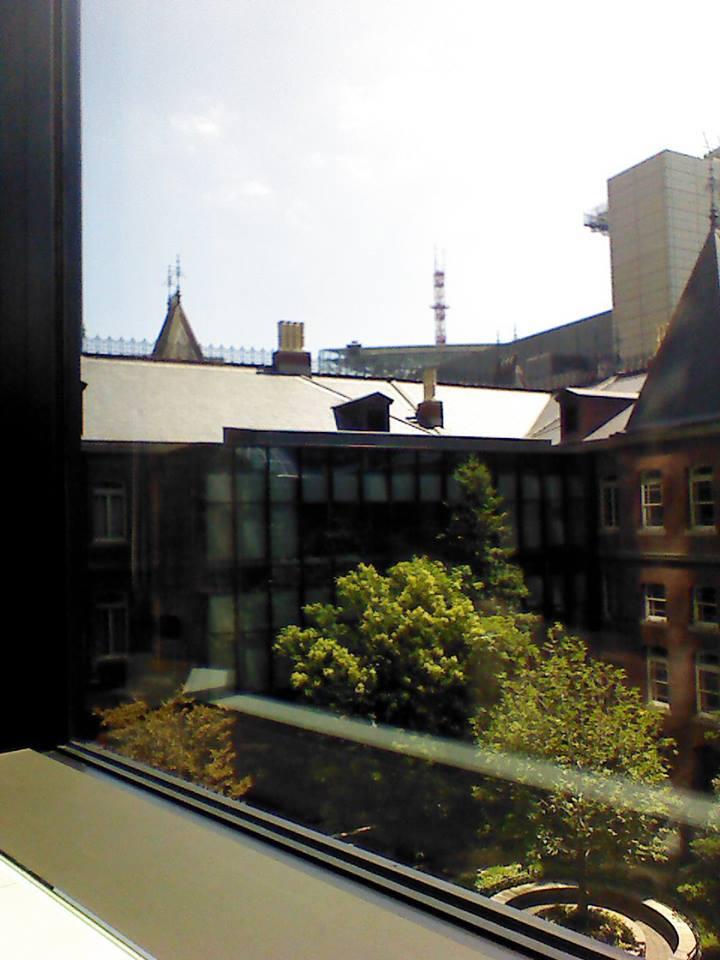 窓から見た中庭