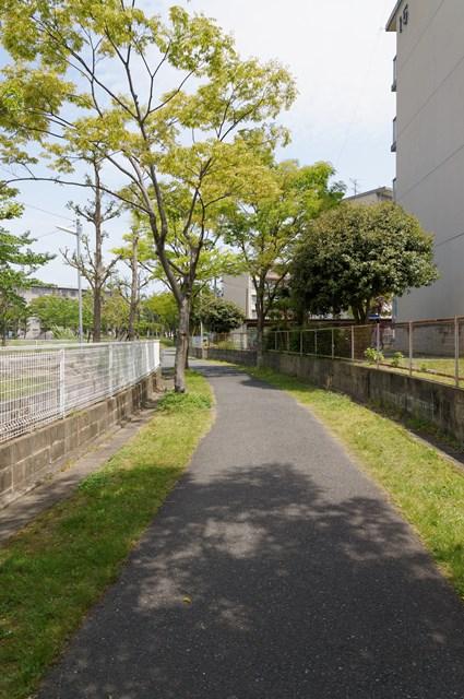福岡市営壱岐団地の遊歩道