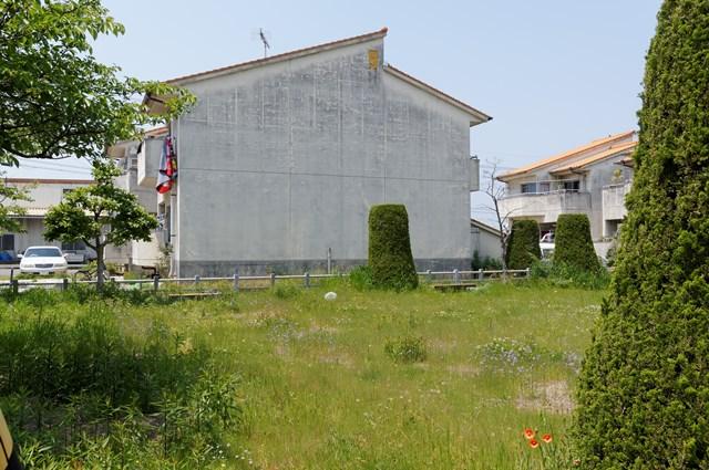 松前町営江川団地の芝生
