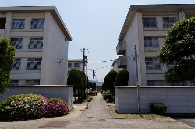 伊予市営鳥ノ木団地の歩行者専用道と住棟