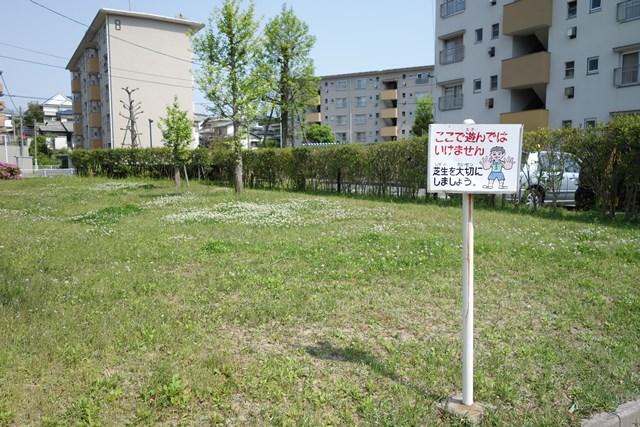 公団堤団地の芝生
