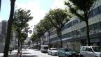 横須賀中央 18