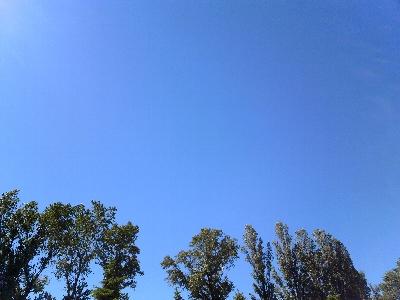 真夏なら、これほど空は高くない。