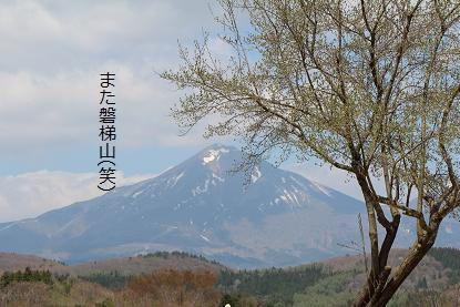 5月12日の磐梯山