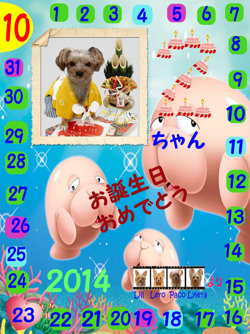 10-23-2014ゴンちゃん誕生日カード