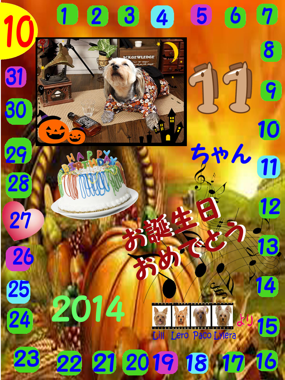10-27-2014ゴエちゃん誕生日カード のコピー