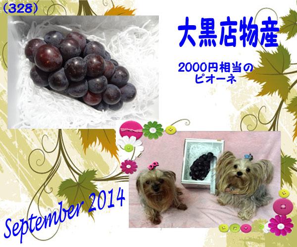 (328)2014年09月到着大黒天物産 (2)