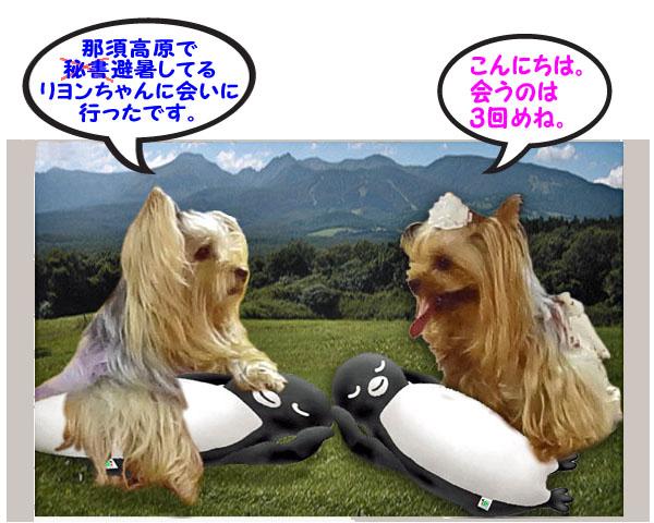 02那須でリヨンちゃんに会う夢を見た