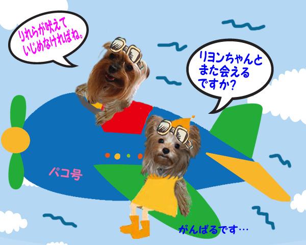 09東京に帰るリーパコ