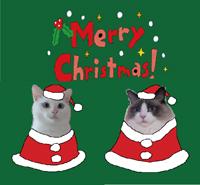 にゃびりんクリスマス