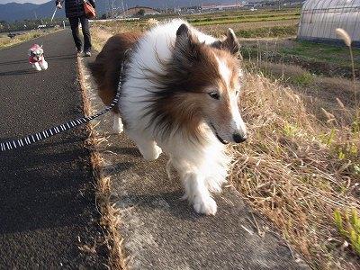 風が冷たーい