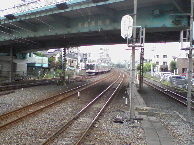 SA3A0081.jpg