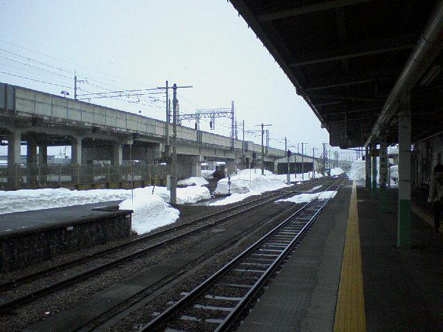 SA3A1544.jpg