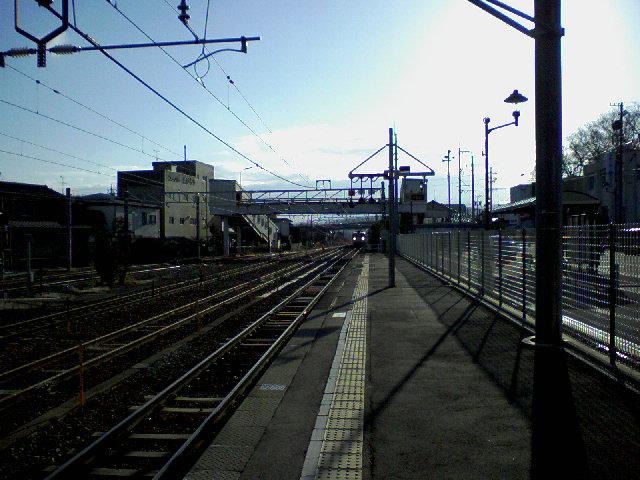 SA3A1557.jpg