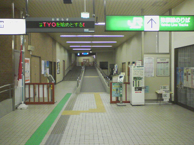 SA3A1561.jpg