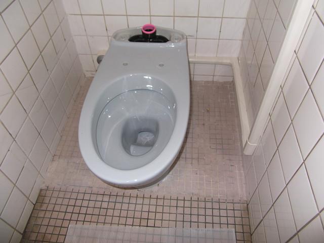 福寿庵トイレ 10