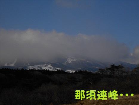 DSCN8498.jpg