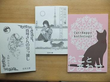 大和さんの本