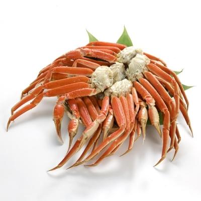 dinos蟹(1)