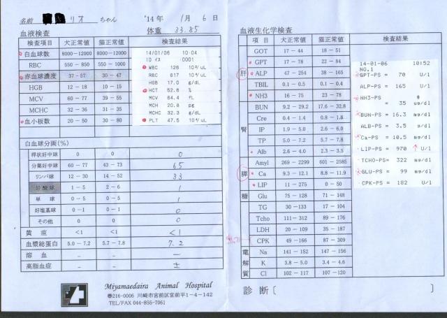 リオ ひきつけ 血液検査2014.1.6
