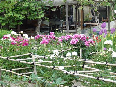 奥殿陣屋 色々な花
