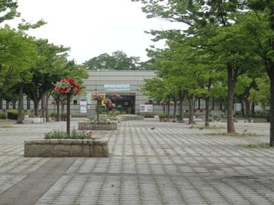 荒子川公園6