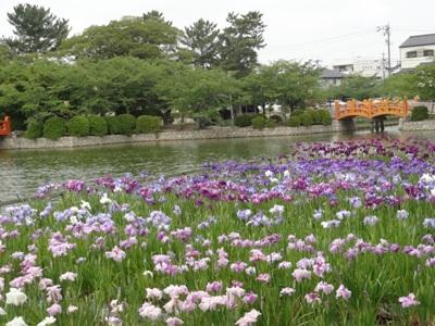 九華公園3