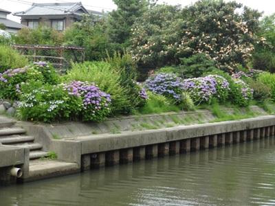 長島水辺のやすらぎパーク2