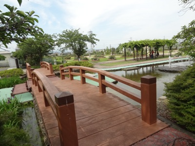 神戸町ばら公園5
