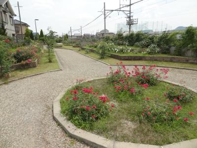 神戸町ローズガーデン3