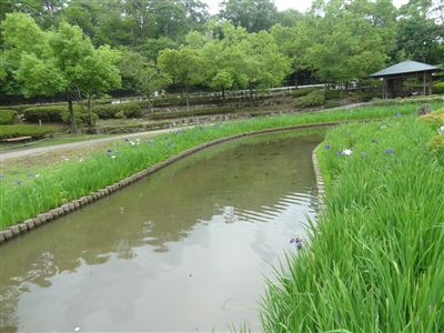 春日井市都市緑化植物園(グリーンピア春日井)3