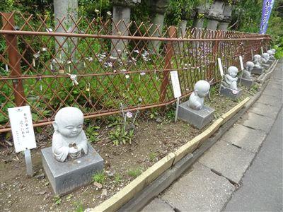 香勝寺(ききょう寺)9