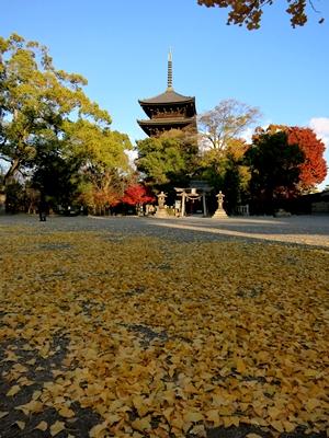 東寺五重塔1312