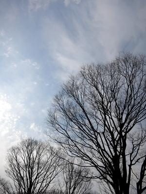 冬の空1401