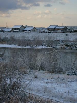 宇治川雪1401