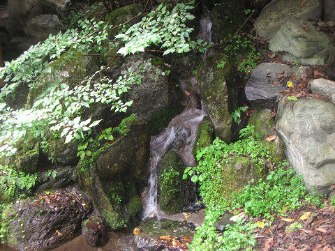 5キャンプ場の滝