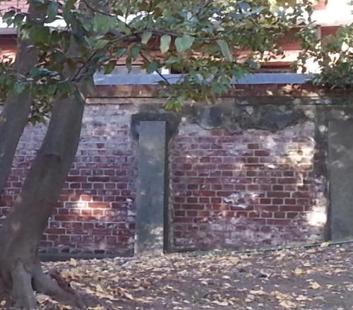 岩崎庭園27
