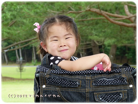 hitachi14_20130718144548.jpg