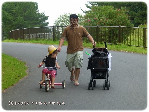 hitachi16.jpg