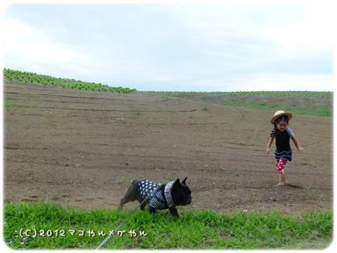 hitachi18.jpg
