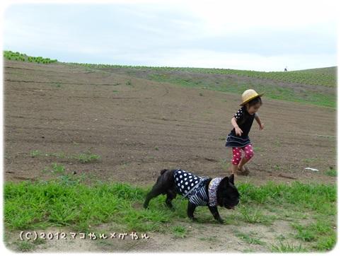 hitachi19.jpg