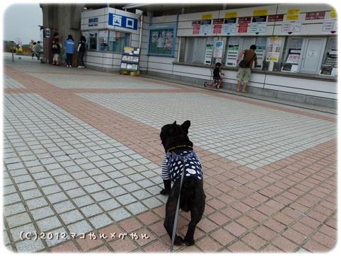 hitachi1_20130718144252.jpg