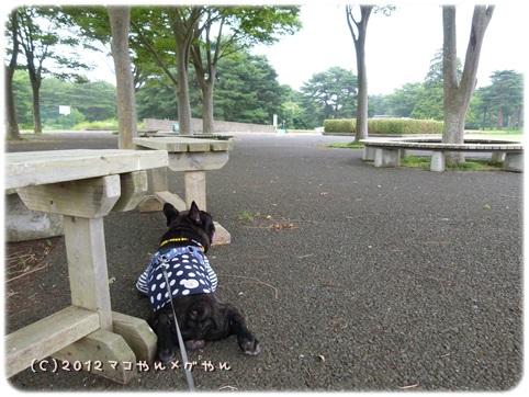 hitachi2_20130718144253.jpg