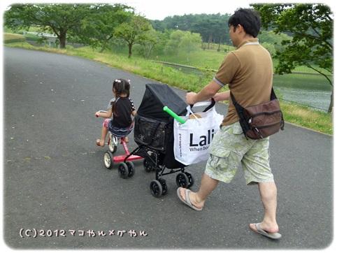 hitachi7_20130718144510.jpg