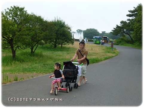 hitachi8_20130718144511.jpg
