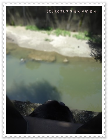 syokasanpo8.jpg