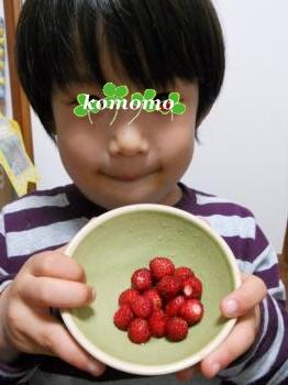 DSCN0842_convert_20130602220748.jpg
