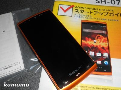 DSCN1053_convert_20130630141440.jpg