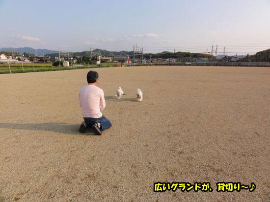 DSC03388.jpg
